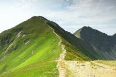 Widok na Wołowiec. Szczyty wokół Doliny Chochołowskiej.